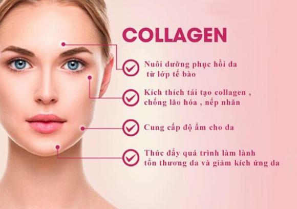 collagen uc mang den nhieu tac dung